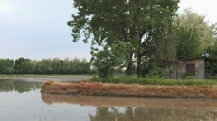 Rustic shack beside a rice field in Lomellina, Italy, panoramic view Stock Footage