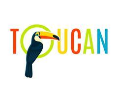 Toucan Flat Decorative Nameplate Design Banner - stock illustration