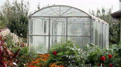 View of the inner garden. With no people. Spacious and bright greenhouse. Stock Footage