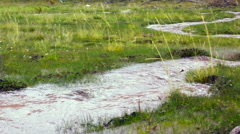 Muddy floodwater running down a gully on the paramo - stock footage