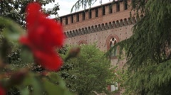 Red rose with italian castle in the background, Pavia, PV, Italy, focus shift - stock footage