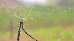 Garden Irrigation Sprinkler watering lawn Stock Footage