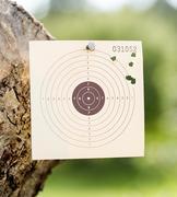 Rifle target - stock photo