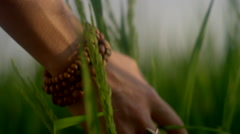 Hand running through tall grass Stock Footage