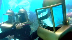 Underwater photo shoot with fish at the Bermuda Helmet Diving tour. Stock Footage