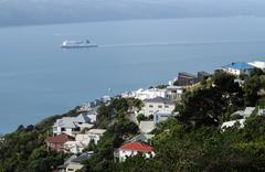 Overlooking Wellington harbour, N.Z. - stock photo