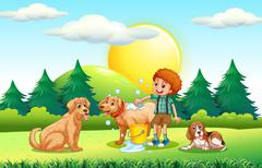 Boy giving dogs bath in the park Stock Illustration