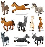 Horses and donkeys in different poses Stock Illustration