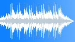 Future Looks Bright (15 second version) - stock music