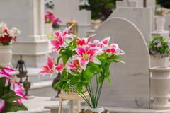 Beautiful flowers on a grave after a funeral. Kuvituskuvat