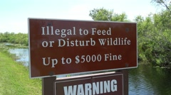 Sign - Illegal to feed or disturb wildlife - stock footage