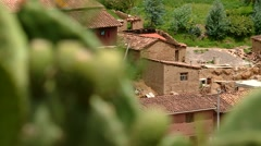 Cactus in a andean village in Peru Stock Footage