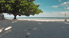 The beach with white sand with a tree. Aerial view. Philippines Stock Footage