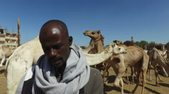 Local man at Camel market in Daraw Stock Footage
