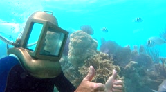 Guide shows underwater creatures at the Bermuda Helmet Diving tour. - stock footage