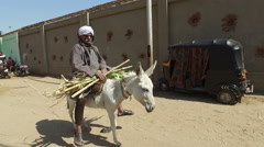 Local man on donkey carry sugar cane Stock Footage