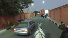 Closeup of local man riding horse cart on urban road in Luxor Stock Footage