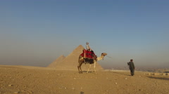 Egyptian man leads a camel with woman riding on top of it at pyramids of Giza - stock footage