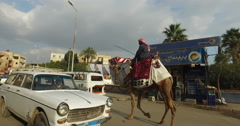 Man riding a camel on street in Giza Stock Footage