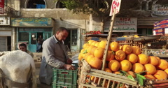 Salesman selling fruits on side of the road in Giza Stock Footage