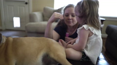 Cute playful toddler playing on the family dog in their living room 4k Stock Footage
