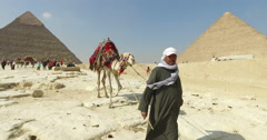 Egyptian man leading camel at pyramids of Giza - stock footage