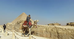 Egyptian man on a camel talking on phone at Giza pyramids complex - stock footage