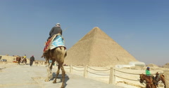 Back view of egyptian man on a camel at Giza pyramids complex - stock footage