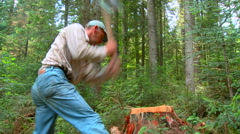 Man splitting wood with axe in the forest rn Stock Footage