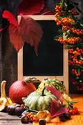 Pumpkins, nuts and empty chalkboard Stock Photos
