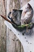 Tow raw fish with rosemary Stock Photos