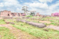 Defocused background with ruins of the Palatine Hill in Rome - stock photo