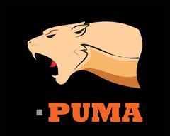 Puma Head. Elegant Bold muscular cougar Stock Illustration