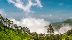 Time lapse of valley from Lipton's Seat with fast moving clouds. Sri Lanka. 4K Stock Footage