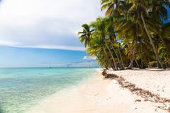 Caribbean beach in Saona island, Dominican Republic - stock photo