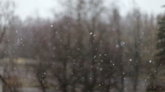 Snow falling on the background of trees Stock Footage