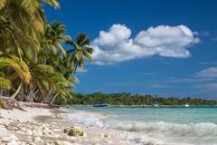 Tropical beach with corals in caribbean sea, Saona island, Dominican Republic - stock photo