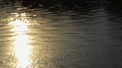 Bokeh of water  Sparkling is shining on a sunny  evening Stock Footage