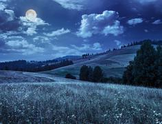 large meadow with herbs,  trees in mountain area at night - stock photo