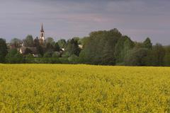 catholic church Leutersdorf - stock photo