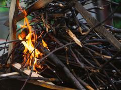 evening small bonfire - stock photo
