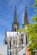 Cologne Cathedral roof and towers with a green tree in the foreground and blu - stock photo