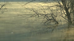 The fog creeps over the water. Stock Footage