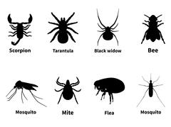 Silhouettes of harmful stinging insects - stock illustration