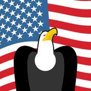 Bald Eagle USA national symbols. Large birds of prey and  flag of America. Am Stock Illustration