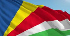 Beautiful looping flag blowing in wind: Seychelles - stock footage