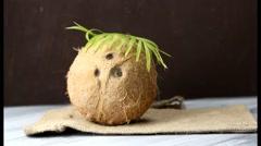A coconut on a burlap cloth. - stock footage