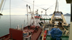 Unloading of fish from the fishing trawler on the transport vessel Stock Footage