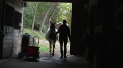 Horse Coming into Barn Stock Footage