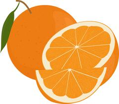 Fresh oranges fruits with green leaf, whole  and half  isolated on white Stock Illustration